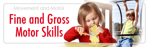 fine and gross motor skills